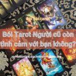 Bói Bài Tarot Người cũ còn tình cảm với bạn không?